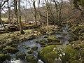 The River Carron - geograph.org.uk - 1770150.jpg