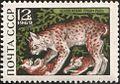 The Soviet Union 1969 CPA 3797 stamp (Lynx).jpg