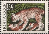 The Soviet Union 1969 CPA 3797 stamp (Lynx).jpg