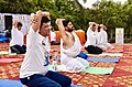 The Union Minister for Railways, Coal, Finance and Corporate Affairs, Shri Piyush Goyal performing Yoga, on the occasion of the 4th International Day of Yoga 2018, in Noida, Uttar Pradesh on June 21, 2018 (2).JPG