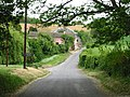The road through West Langdon, in May - geograph.org.uk - 426278.jpg