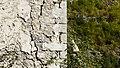 The tower-house of Lulash Keci (Ethnographic Museum of Dukagjin) 03.jpg