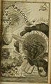 Theosophia revelata, das ist, Alle göttliche Schriften (1730) (14780093224).jpg