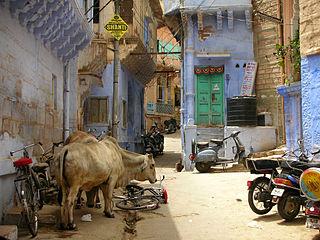 Tom Maisey - Jodhpur Street (by).jpg