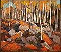 Tom Thomson The Birch Grove, Autumn.jpg