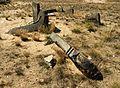 Tombstones - Jewish cemetery in Karczew, Otwock County, Masovian Voivodeship, Poland. - panoramio (15).jpg
