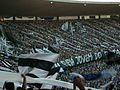Torcida do Botafogo (Final Taça GB09) 03.JPG