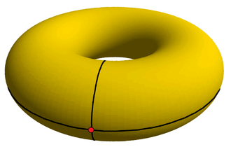 Torus - The simplest tiling of a flat torus is {4,4}<sub>1,0</sub>, constructed on the surface of a duocylinder with 1 vertex, 2 orthogonal edges, and one square face. It is seen here stereographically projected into 3-space as a torus.