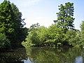 Tottenham Cemetery lake - geograph.org.uk - 235614.jpg