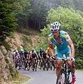 Tour de France 2012, vino (14869545382).jpg