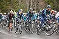 Tour de Romandie 2013 - étape4 - peloton dans le col des Mosses (3).jpg