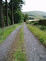 Track leading to Holm of Dalquhairn. - geograph.org.uk - 530152.jpg