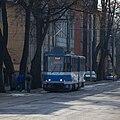 Tram - Kadriorg.jpg