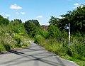 Trans Pennine Trail - geograph.org.uk - 1369063.jpg
