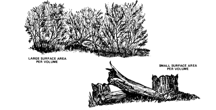 Trees for Heat Conduction and Wildland Fires 2010-08-17.png