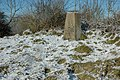 Trig Point on Langley Hill - geograph.org.uk - 1631131.jpg