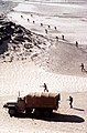 """Troops advance toward the """"enemy"""" in a desert assault that is taking place during exercise Bright Star '82 - DPLA - e5b99a4916d6e03943226157f4c995aa.jpeg"""