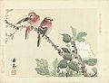 Twee rode vogels op tak met witte bloem.jpeg