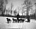 Two men with dogsled team in snow, Inland Passage, circa 1906 (AL+CA 7619).jpg