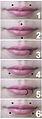 Types of bites.jpg