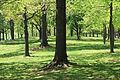 USA-Constitution Gardens.jpg