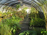 Tampa Nature Center