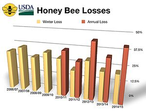 Colony collapse disorder - honeybee hive losses 2006 to 2015 per USDA-ARS