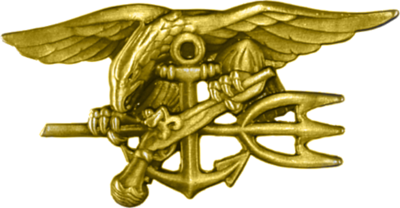 02041673201 Special Warfare insignia known as the
