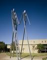 University of Houston Collegium, Houston, Texas LCCN2011630863.tif
