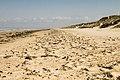 Utah Beach IMG 0105-2-2.jpg