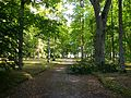Uue-Põltsamaa mõisa park 4.jpg