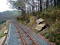 Vale of Rheidol Railway - geograph.org.uk - 214749.jpg