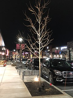 King of Prussia Town Center