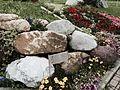 Valsassina luglio 2014 22.jpg