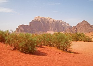 Wadi Rum - Typical Wadi Rum vista