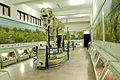 View of the Paleogallery at PMNH.jpg