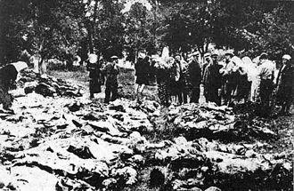 Excess mortality in the Soviet Union under Joseph Stalin - Exhumed mass grave of the Vinnytsia massacre