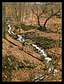 Vodní systém Rýznbuku - panoramio.jpg