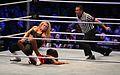 WWE Smackdown Wrestlemania Revenge (8660969871).jpg