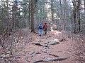 Wapack Trail 2 (7638331362).jpg