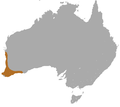 Western Brush Wallaby area.png