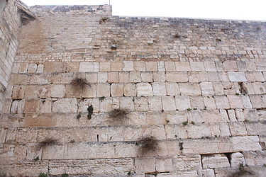 Western Wall in the rain 2010 7.jpg