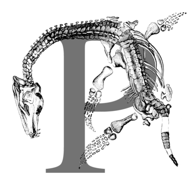 WikiProject Paleontology.png