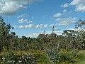 Willans Hill Reserve (1).jpg