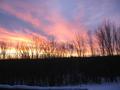 Winter sunrise (5125867259).png