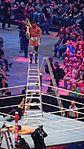 WrestleMania 32 2016-04-03 18-22-17 DSC-HX90V 3429 DxO (27838715705).jpg