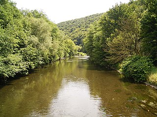 Wupper at Wupperhof