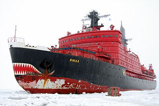 Ship type capable of navigating through waters covered with ice