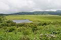 Yashimagahara Wetland 02.jpg