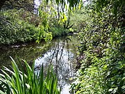 The Yeading Brook